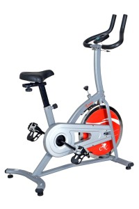 Sunny Health and Fitness Indoor Spinning Bike