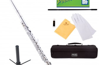 Top 10 Best Flute Brands of 2017
