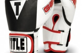 Top 10 Best Boxing Gloves of 2017